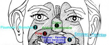 correspondances-faciales